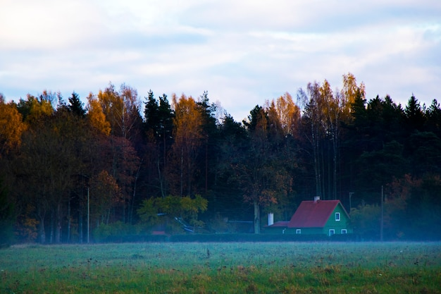 Case del villaggio e foresta, foschia e nebbia nella valle in europa