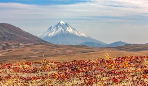 Vulcano vilyuchinsky nel fuoco selettivo della penisola di kamchatka autunnale