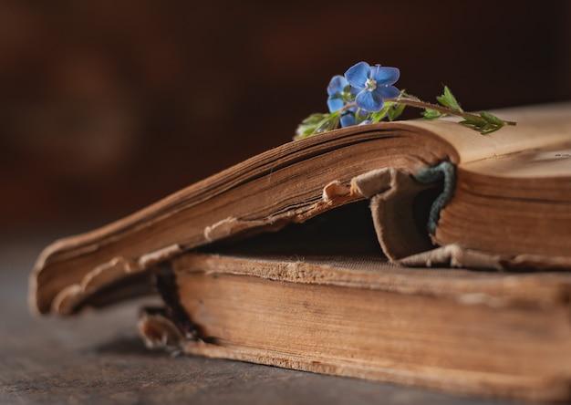 Libri d'annata con un mazzo dei fiori selvaggi della molla. nostalgico vintage d'atmosfera.