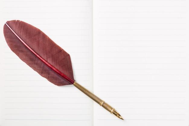 Fine marrone d'annata della penna della piuma di spoletta su sul taccuino in bianco.