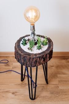 Lampada da tavolo vintage e creativa per l'illuminazione di interni per l'arredamento della casa moderna con piante grasse.