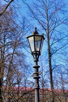 Lampione stradale a gas vintage su uno sfondo di cielo azzurro e rami di alberi senza foglie