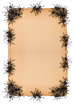 Sfondo di carta vintage con molti ragni neri. decorazione di halloween