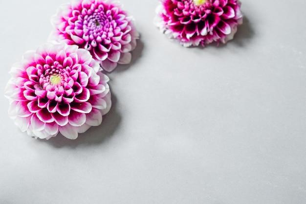 Cartolina d'epoca con garofani di fiori freschi sfondo astratto per il design