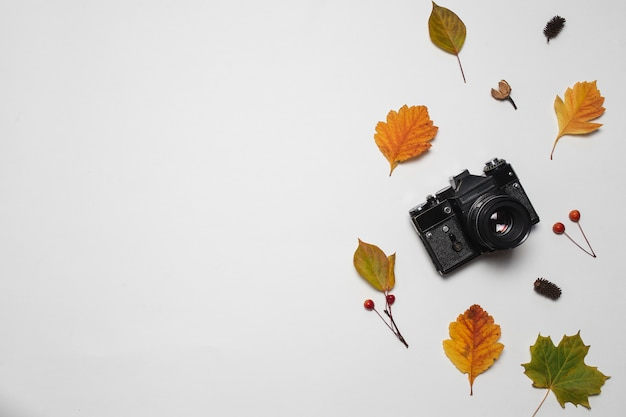 Retro macchina fotografica d'annata e foglie di caduta di autunno con le bacche e la foglia di acero rosse.