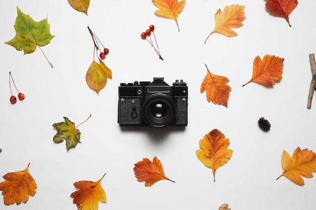 Retro macchina fotografica d'annata e struttura floreale delle foglie di caduta di autunno con le bacche e la foglia di acero rosse.