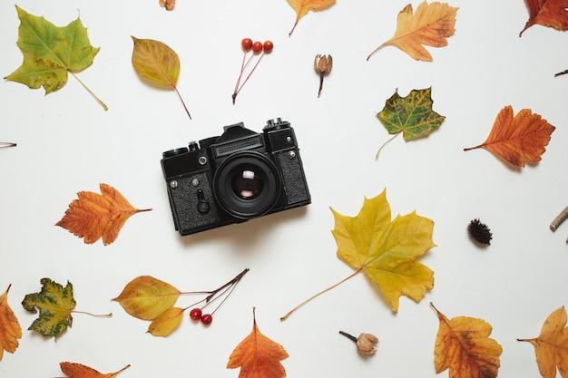 Retro macchina fotografica d'annata e struttura floreale delle foglie di caduta di autunno.