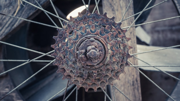 Ruota di bicicletta del raggio arrugginito dell'annata
