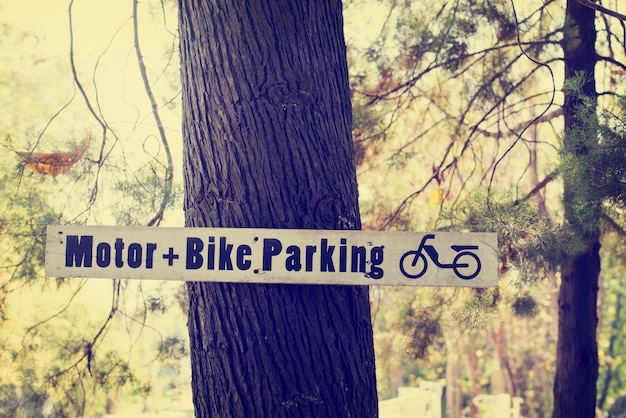 Autunno segno parcheggio sul pino