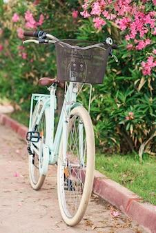 La bici delle donne d'annata vicino ai cespugli verdi con i fiori
