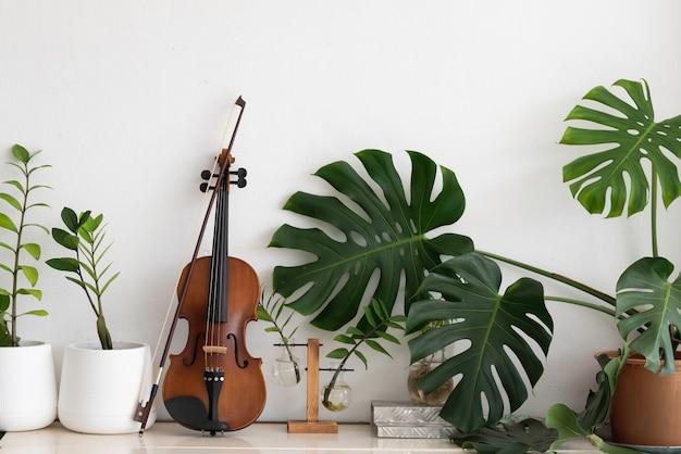Violino e arco messi accanto a foglia verde e vaso di albero sullo sfondo