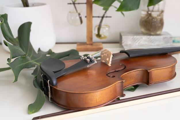 Violino messo accanto a foglia verde su superficie bianca