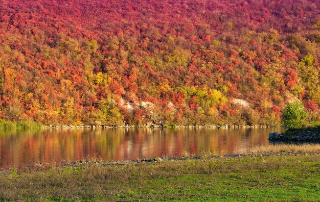 Vivid fogliame autunnale si riflette sul fiume dniester, repubblica moldova.