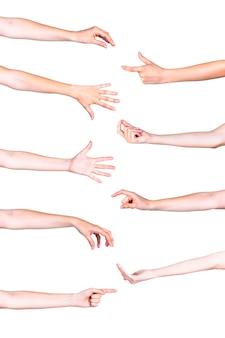 Vivaci gesti delle mani umane su sfondo bianco