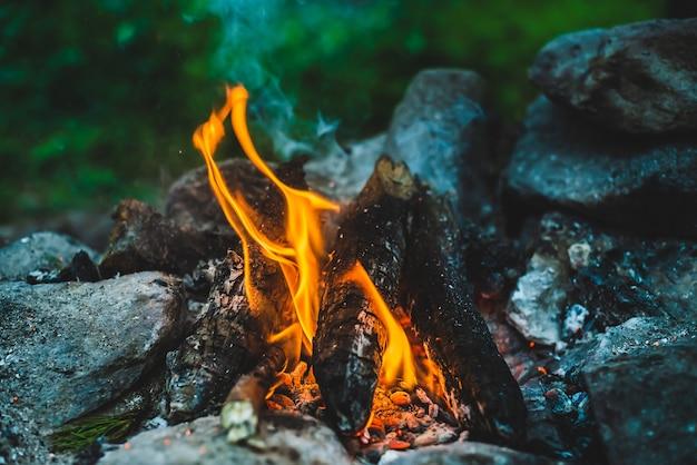 Legna da ardere fumante vivida bruciata nel fuoco da vicino