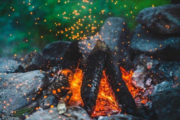 Vivida legna da ardere fumante bruciava nel fuoco