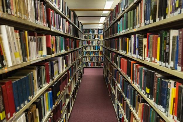 Volumi di libri sullo scaffale in libreria