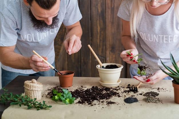 Stile di vita da giardinaggio volontario. germinazione della piantina. coppia impegnata nel trapianto di piante.