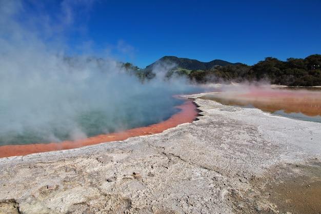 Parco geotermico di wai-o-tapu, rotorua, nuova zelanda