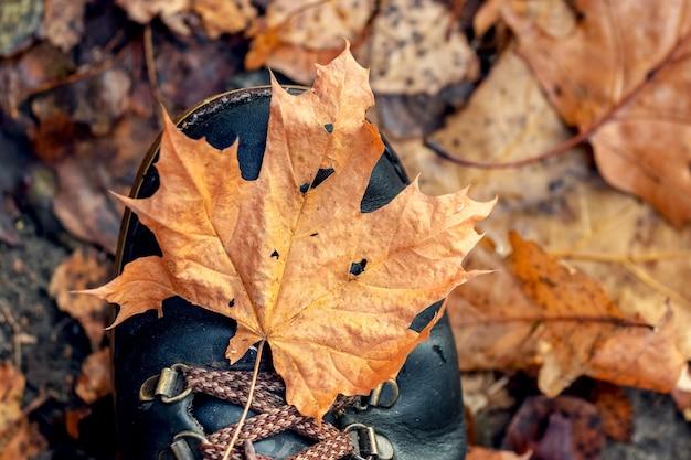 Una passeggiata nel bosco autunnale. foglia d'autunno secca su uno stivale