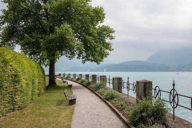 Una passeggiata nel parco, tra fiori, alberi verdi e il lago di thun. sfondo del paesaggio estivo