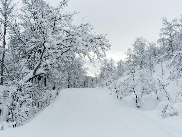 Camminando attraverso la neve in norvegia