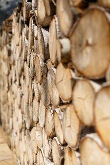 Parete per sfondo di fette lisce rotonde di betulla