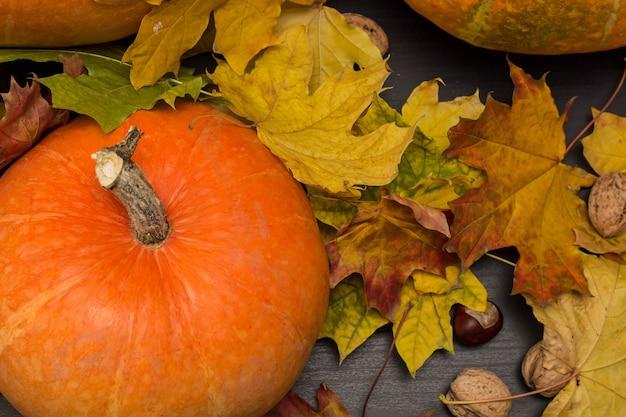 Noci e foglie d'autunno