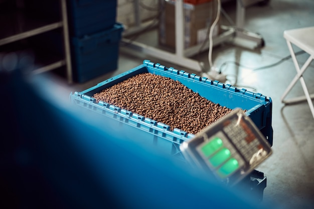 Magazzino con chicchi di caffè arabica freschi in contenitore di plastica e bilancia elettronica