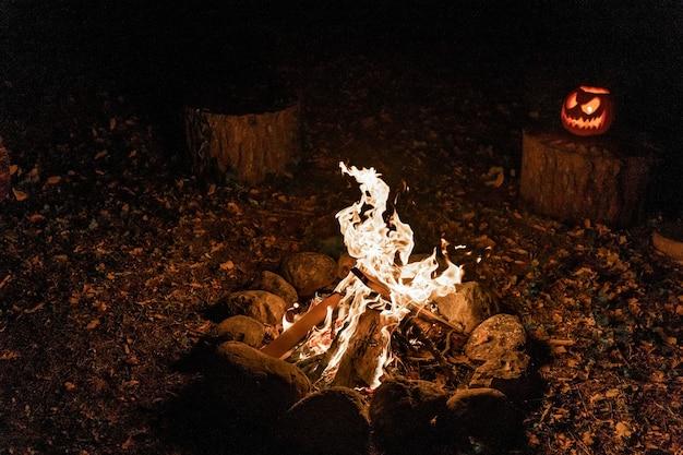 Falò caldo e accogliente nella foresta fuoco di stagno durante le vacanze durante il campeggio