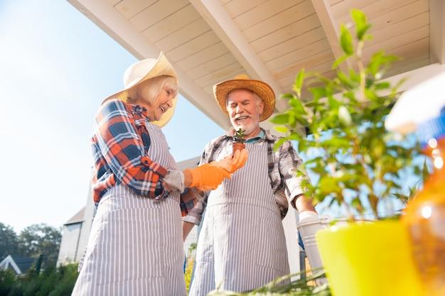 Giornata calda. coppia di pensionati trascorre una calda mattina d'estate fuori dalla loro casa a piantare fiori