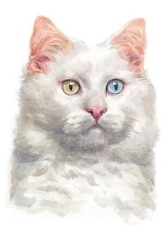 Pittura ad acquerello del turco van cat