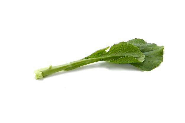 Gocce d'acqua sulla verdura fresca di cavolo cinese su sfondo bianco Foto Premium