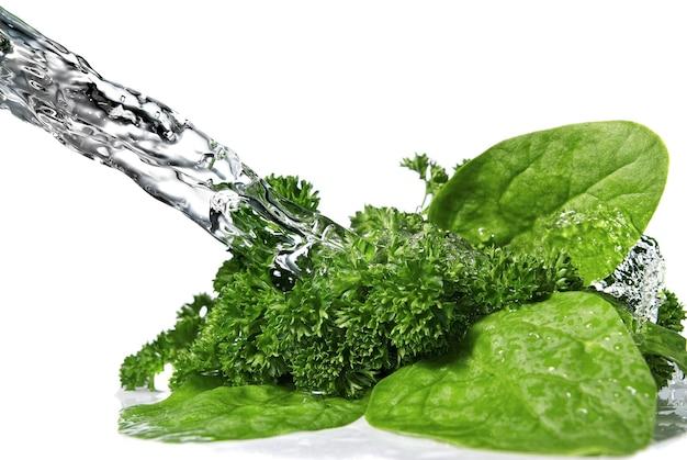 Gocce d'acqua su spinaci verdi e prezzemolo isolato su bianco