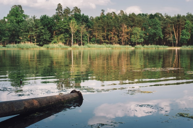 Inquinamento dell'acqua e dell'ambiente da rifiuti industriali