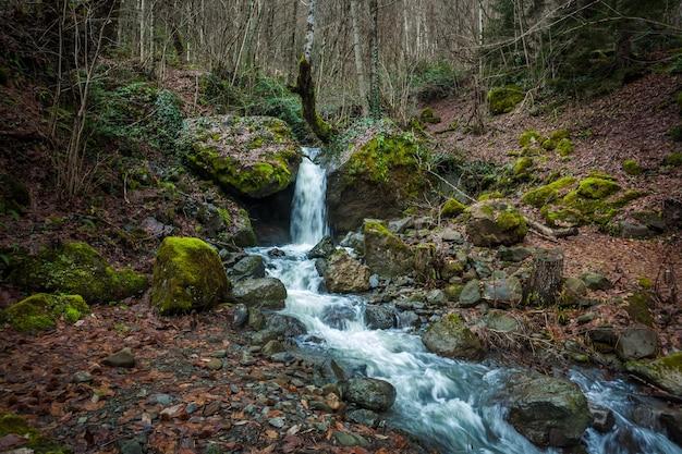 L'acqua che scorre giù per le rocce, muschio sulle rocce, svaneti, georgia.