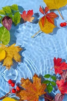 Increspatura dell'acqua con foglie autnm. sfondo alla moda con copia spazio.