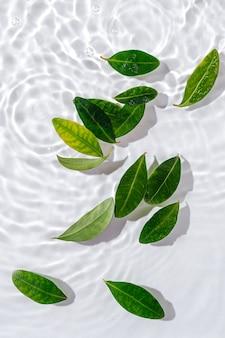 Ondulazione dell'acqua con foglie verdi. sfondo bianco alla moda per la presentazione del prodotto cosmetico. concetto artistico. copia spazio