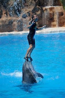 Spettacoli d'acqua con i delfini nel parco loro