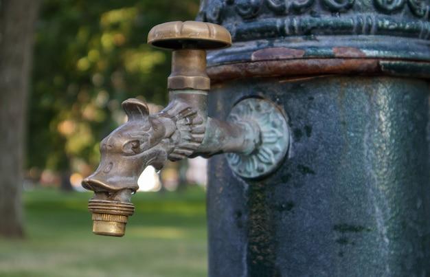 Pozzo d'acqua nel parco in estate, sistema di pompaggio, primo piano e vista laterale di un bel rubinetto in bronzo metallico. parte di un vecchio rubinetto da esterno in ferro. fare clic sulla sala pompe dell'acqua minerale.