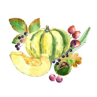 Zucca di autunno dell'acquerello