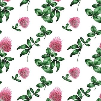 Sfondo acquerello con fiore di campo di trifoglio