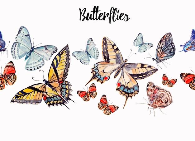 Illustrazione dell'acquerello di bellissime farfalle