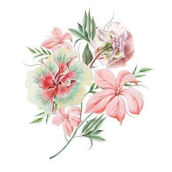 Mazzo dell'acquerello con fiori. rosa. ibisco. illustrazione. disegnato a mano.