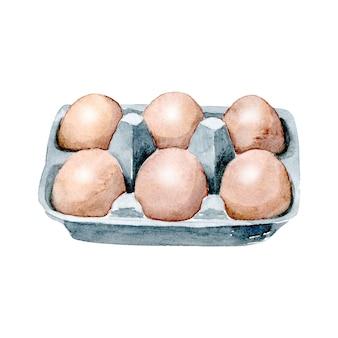 Uova di gallina acquerello in confezione di cartone