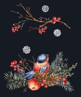 Cartolina d'auguri naturale di natale dell'acquerello di rami di abete, mela rossa, bacche, pigne, uccello invernale. illustrazione d'epoca