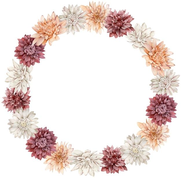 Corona di astri acquerello cremisi, bianchi e arancioni. cornice del cerchio di fiori autunnali. modello autunnale.