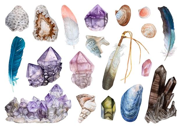 Cristalli dell'acquerello, conchiglie, piume isolate.