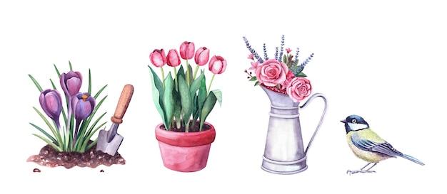Composizione floreale ad acquerello in una brocca di metallo vintage, cinciallegra e tulipani in vaso. illustrazione di luisa isolato su bianco. bouquet con rose, lovanda. decorazione d'interni fattoria e giardino