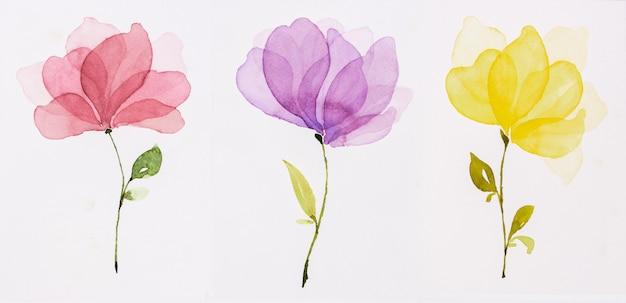 Fiori ad acquerelli